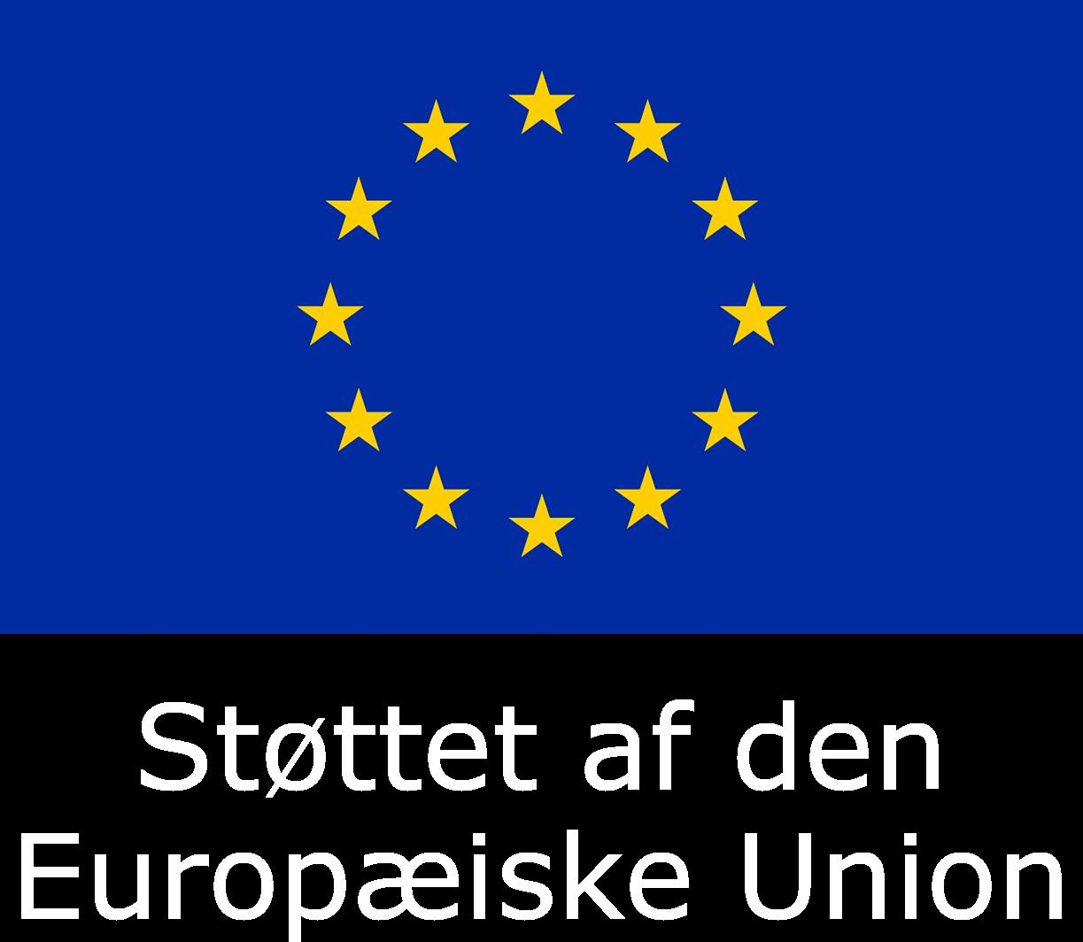 Europæiske Unions flag med tekst under.